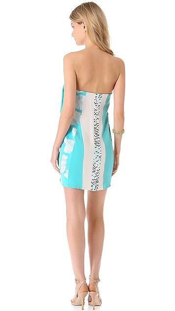 Diane von Furstenberg Rhi Rhi Dress