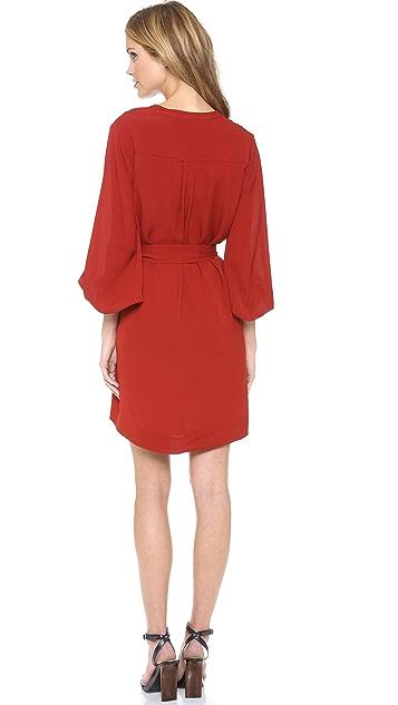 Diane von Furstenberg Tanyana Billow Sleeve Dress