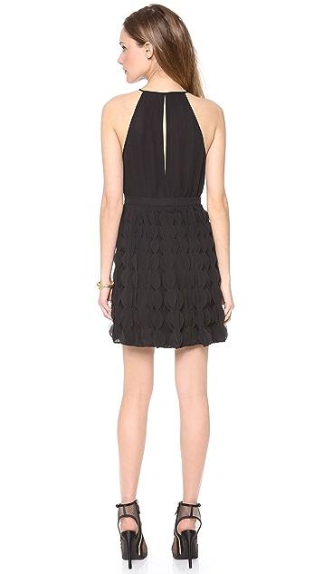 Diane von Furstenberg Gia Ruffle Dress