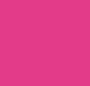 Pink Dahlia/Pink Dahlia