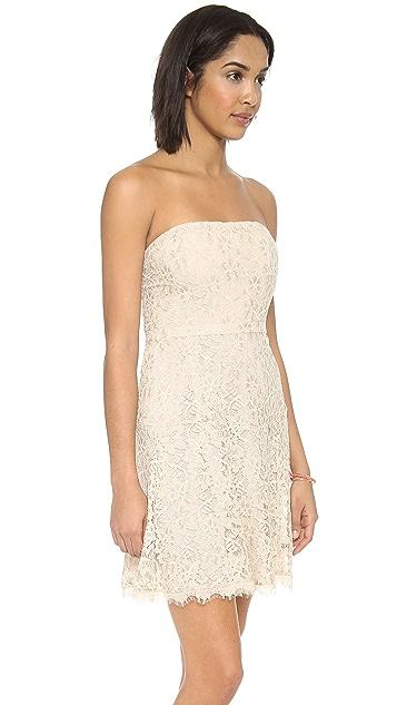 Diane von Furstenberg Amira Lace Strapless Dress