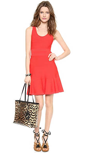 Diane von Furstenberg Perry Dress
