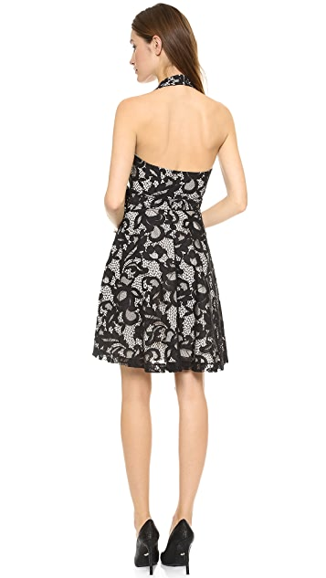 Diane von Furstenberg New Amelia Lace Halter Dress