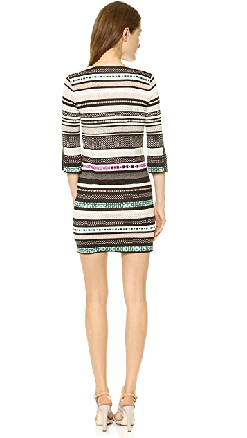 Diane von Furstenberg Rose Mini Dress