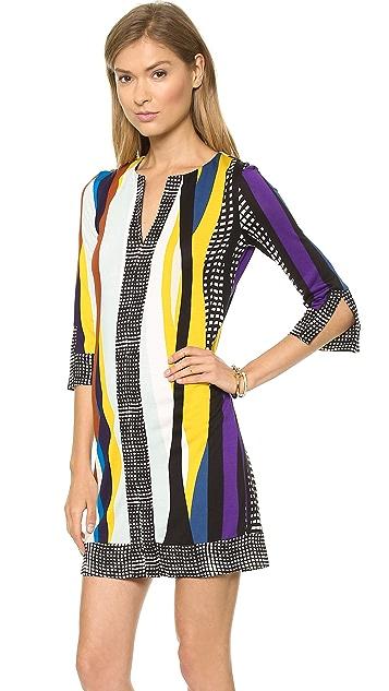 Diane von Furstenberg Rose Tunic Dress