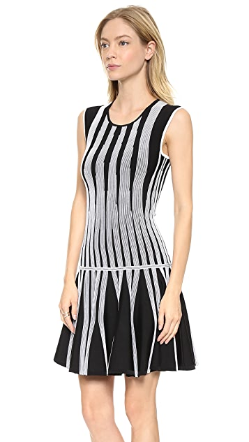 Diane von Furstenberg Celine Dress
