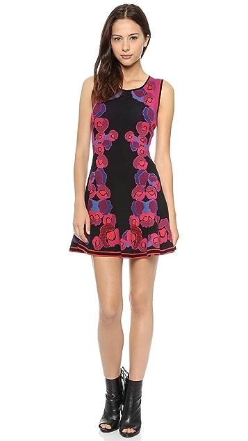 Diane von Furstenberg Sleeveless Jacquard Body Con Dress