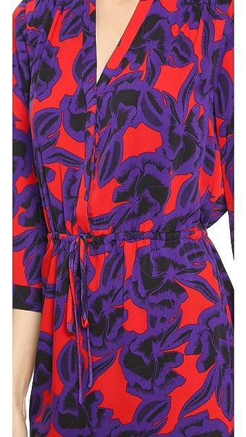 Diane von Furstenberg Freya Dress