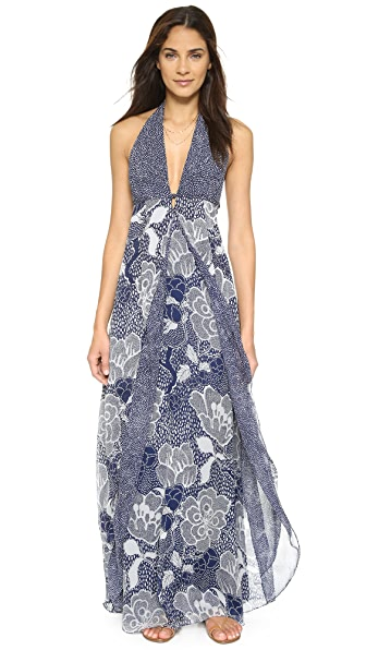 Diane von Furstenberg Fantasia Maxi Dress