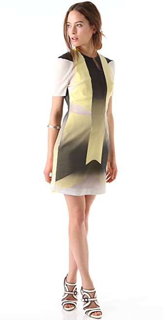Dion Lee Glass Mini Dress