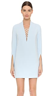 Dion Lee Mesh Laced Dress