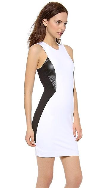 David Lerner The Astor Dress