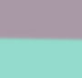 Mint/Purple