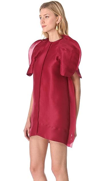 Ellery Shadow Shift Dress