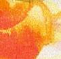 Pale Blue/Orange/Yellow