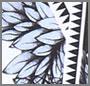 Black/Aztec Floral Print