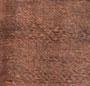 Copper/Blush
