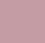 Meadow Violet