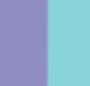 Turquoise/Violet