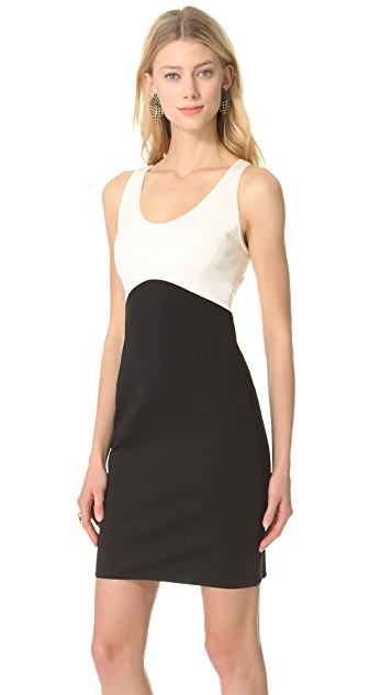 Halston Heritage Sleeveless Colorblock Dress