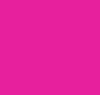 Tulip Pink