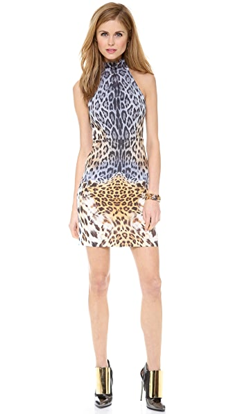 Just Cavalli Leo Degrade Print Collar Dress