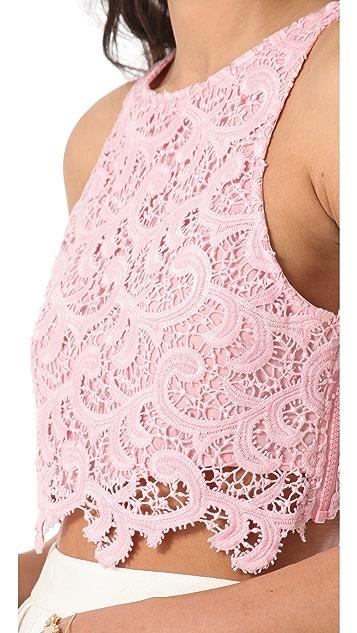 Joy Cioci Samara Lace Crop Top