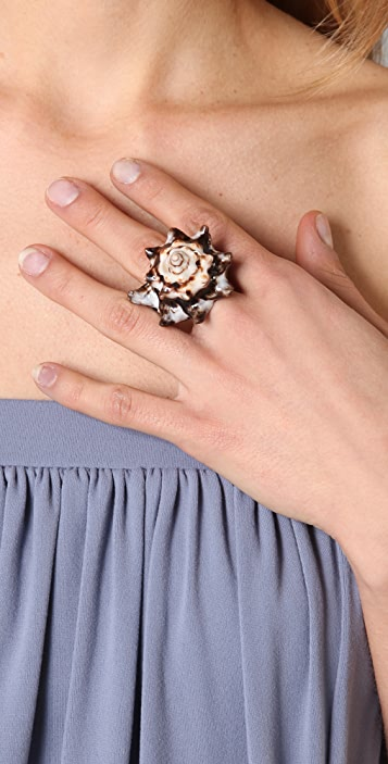Jen's Pirate Booty Natural Shell Ring