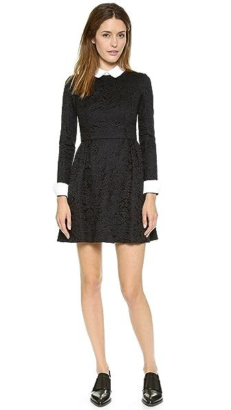 Jill Jill Stuart Collared Lace Dress