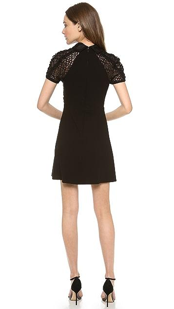 Jill Stuart Sumin Dot Lace Collar Dress