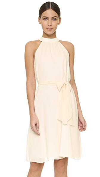 Joanna August Elena Short High Neck Dress - Going to the Chapel