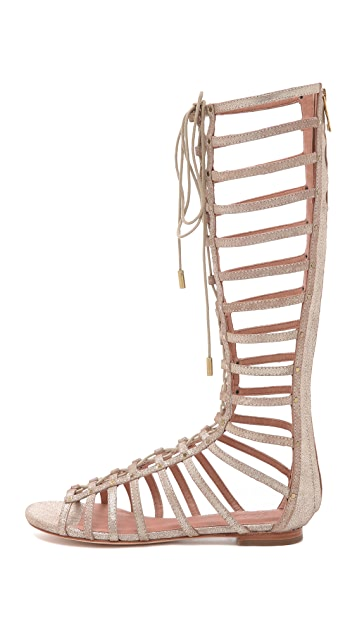 Joie Falicia Gladiator Sandals