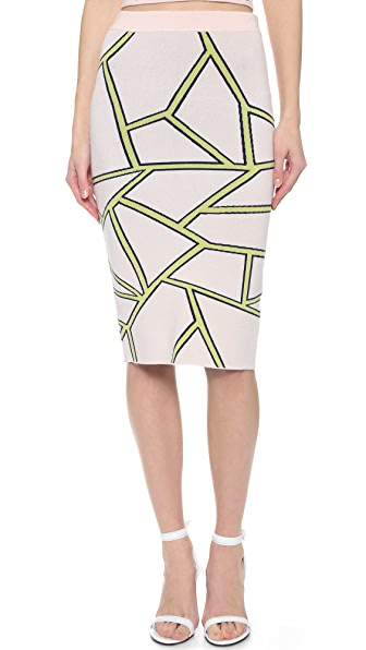 Jonathan Simkhai Fit Knit Intarsia Skirt