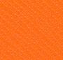 Surprise Orange