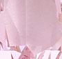 Pink/Cream Multi