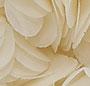Bridal Cream