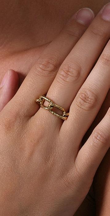 Rachel Leigh Jewelry Interlocking Chain Ring