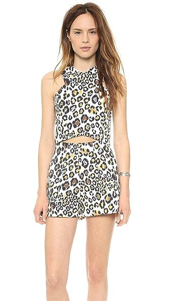 Line & Dot Leopard Crop Top