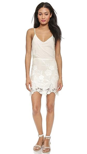 LIV Arie Cami Dress