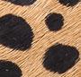 Cheetah/Mint