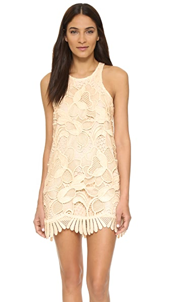 Lovers + Friends Caspian Shift Dress - Bone