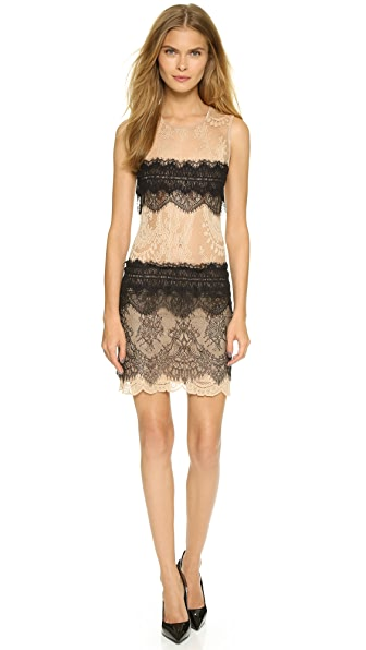 Loyd/Ford Sleeveless Lace Dress - Nude/Black