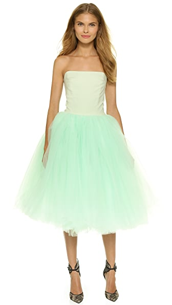Loyd/Ford Strapless Ballerina Dress