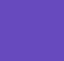 Purple Orchid/Black