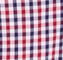 Blue/Red Check