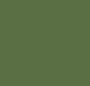 New Fatigue Green