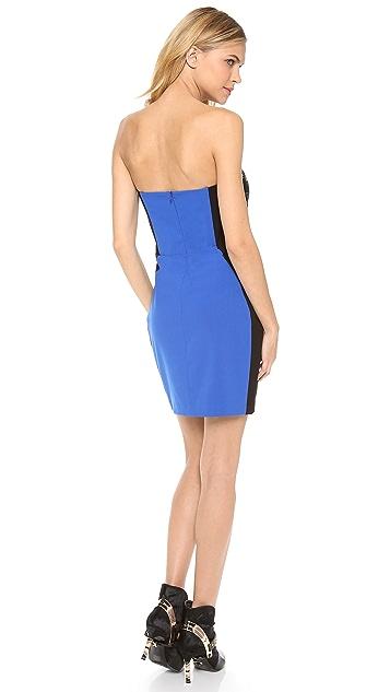 Michelle Mason Bustier Combo Dress