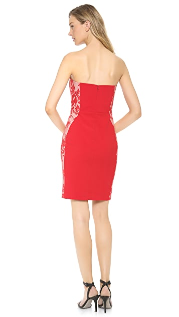 Michelle Mason Corset Lace Dress