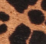 Faded Cheetah