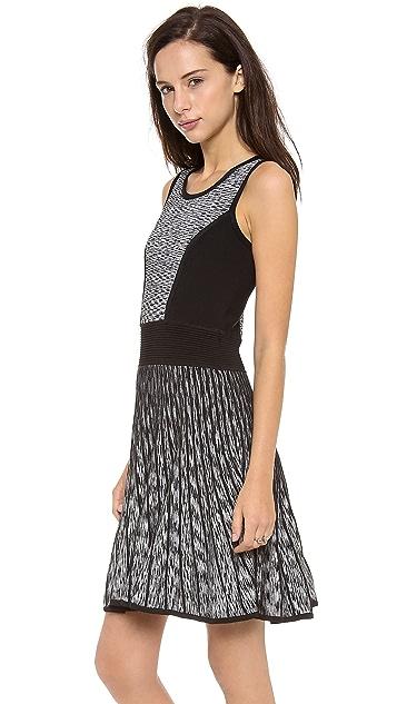 Milly Space Dye Stretch Flare Dress